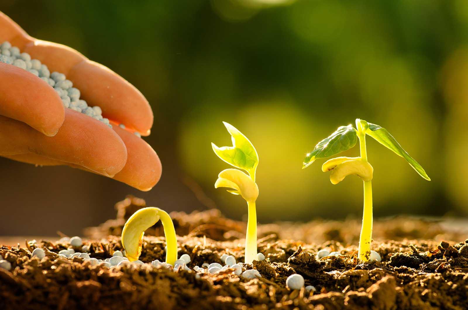 optimize fertilizer use