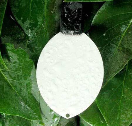 Capteur d'humidité des feuilles